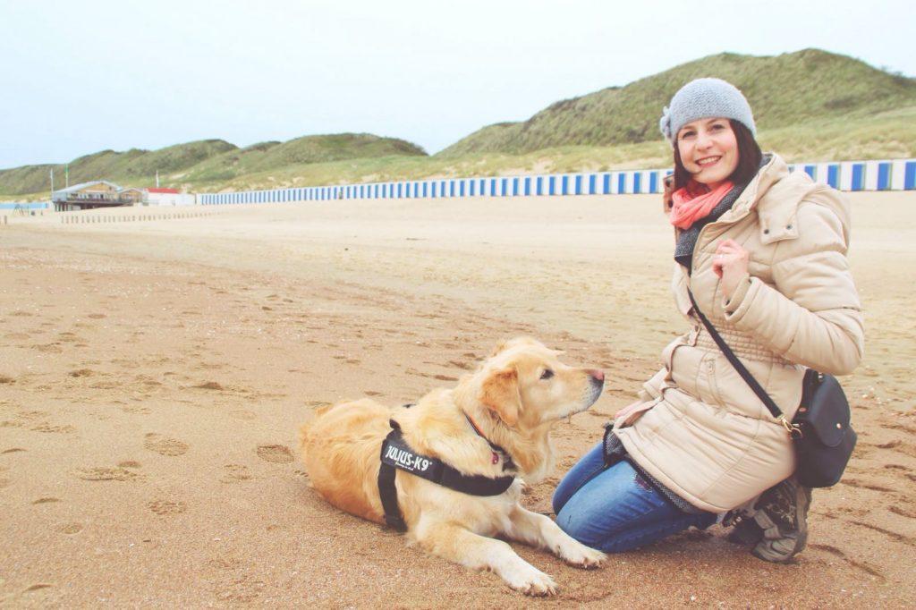 Amy Hunde Blog Holland Urlaub mit Frauchen